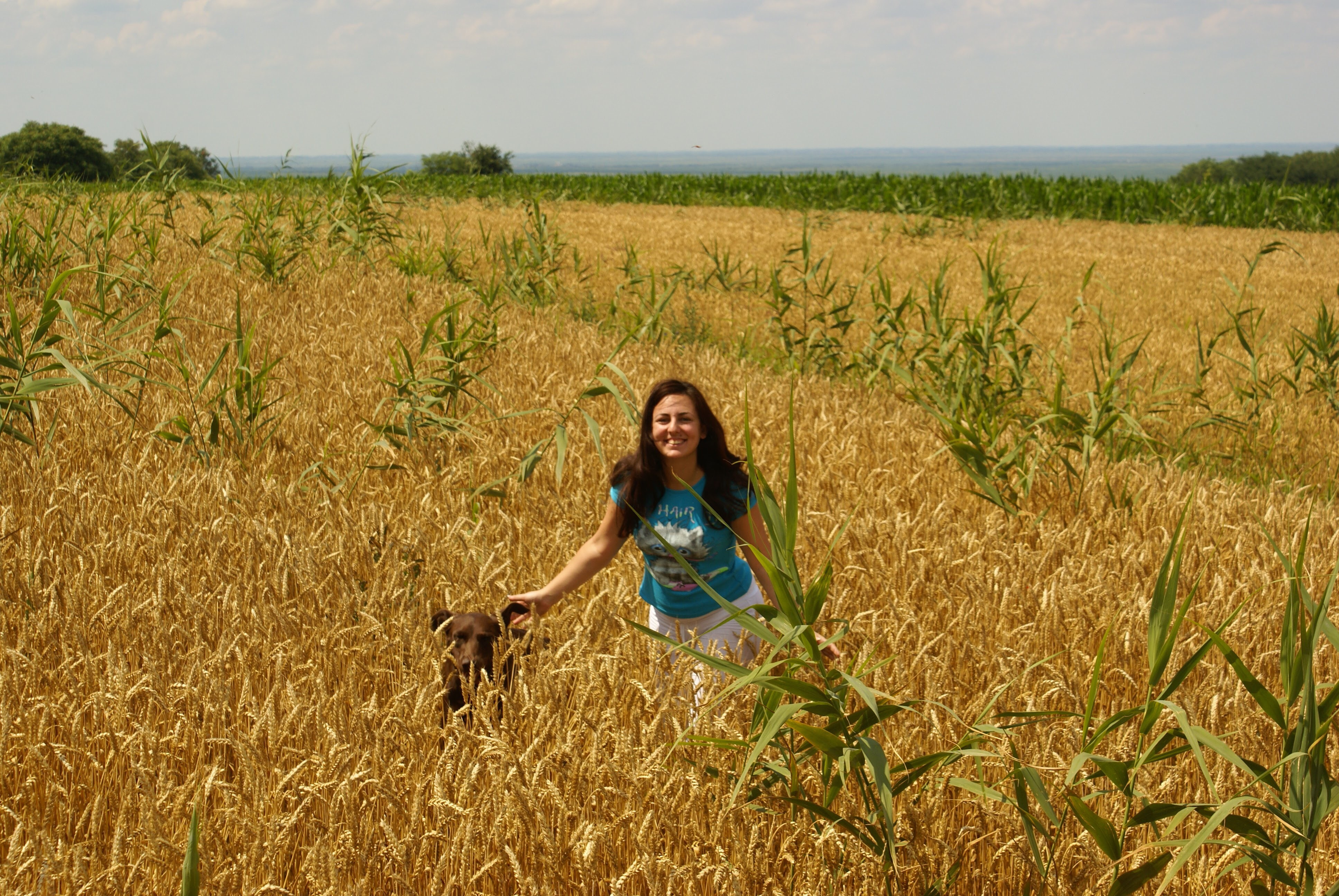 Djura i Nina u polju pženice